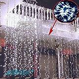AGPtek® 3MX3M/300LED クリスマスパーティー、結婚式などイベント大活躍 防水国際基準防水IP44 カーテンライト LEDイルミネーションライト 8種類の点滅パターン 複数連結可能  コントローラ付き(クールホワイト) 日本語取扱書付き