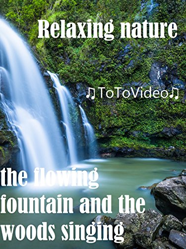 Relaxing nature, the flowing fountain and the woods singing