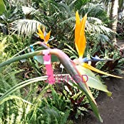 """100pcs 7.9""""x0.79"""" Plastic Plant Hanging Tags Markers Blank Nursery Garden Labels"""