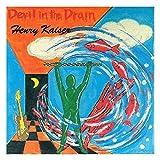 Devil in the Drain by Henry Kaiser (2003-05-07)