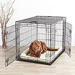 AmazonBasics Double-Door Folding Metal Dog Crate - Large by AmazonBasics