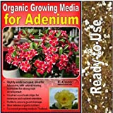 1 Litre -ADENIUM COMPOST-GROWING-MEDIA-DESERT ROSE from E-Coco Products UK (PRICES INCLUDE UK DELIVERY)