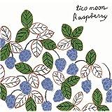 Raspberrytico moon�ɂ��