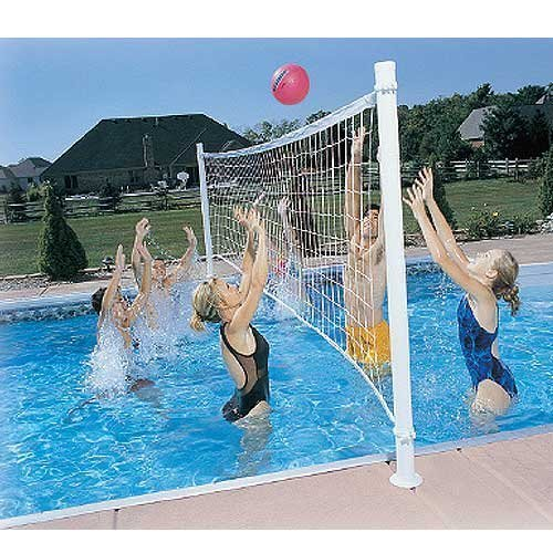 Dunn Rite Pro Volly Retrofit Pool Volleyball Kit by Dunn Rite günstig kaufen