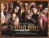 Saheb Biwi Aur Gangster Returns (Hindi Movie / Bollywood Film / Indian Cinema DVD) - 2013