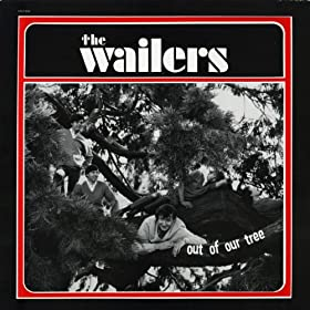 The Wailers - Out of Our Tree