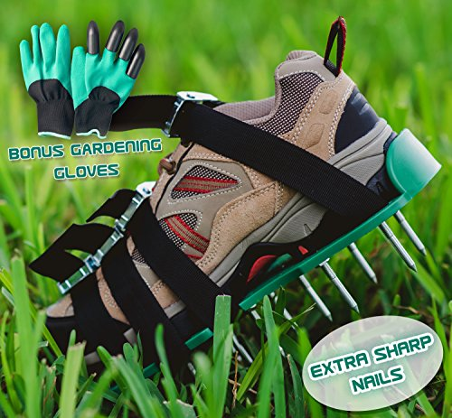 Lawn Aerator Spiked Shoes—Heavy Duty Metal buckles, 4 Adjustable Straps and Sharper Spikes for Effective Soil Aeration and Greener Yard—One Size Fits All—Includes storage bag and garden gloves