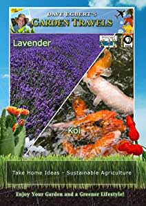 Garden Travels Lavender/Koi