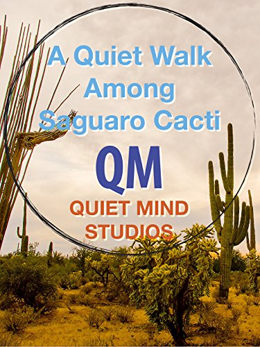 Quiet Walk Among Saguaro Cacti