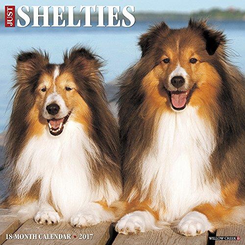 Just Shelties 2017 Wall Calendar (Dog Breed Calendars)