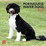 Portuguese Water Dogs 2013 Square 12X...