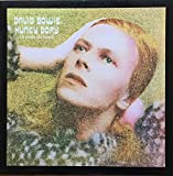 Hunky Dory (A pedir de boca) - Colored Vinyl