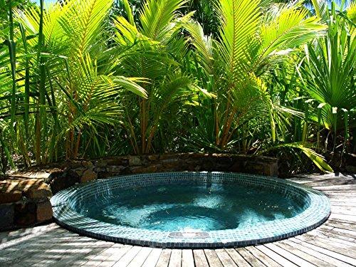 jacuzzi-hot-tub-at-four-seasons-resort-bora-bora-polynesia-art-print-on-canvas-24x16-inches-unframed
