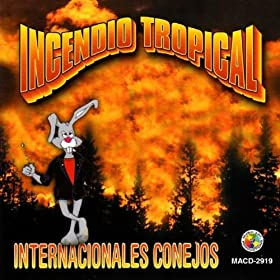 Amazon.com: El Norti-Rollo #7: Internacionales Conejos: MP3 Downloads