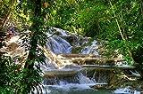 Wallmonkeys WM126034 Jamaica - Dunn River Waterfalls (landmark) Peel and Stick Wall Decals (72 in W x 47 in H)