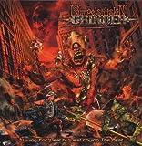 Living For Death: Destroying the Rest by Rumpelstiltskin Grinder [Music CD]