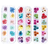 iFancer 108 Pcs Nail Dried Flowers 48 Colors 3D Nail Art Real Flowers Nature Dry Petals Leaves Decor for Nail Art Design Manicure Decoration (Color: Nail Dried Real Flower 4)
