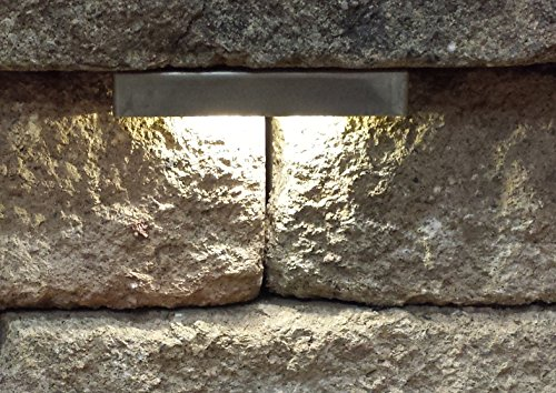 Wall Eye 12 volt WARM (3500K) LED Low-Voltage Landscape Light for Retaining Wall & Stair ...
