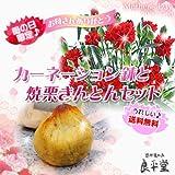 母の日ギフト いつも笑顔のお母さんに♪豪華なカーネーション鉢植え5号サイズ自慢の焼栗きんとん6ヶ 送料無料 ¥3500