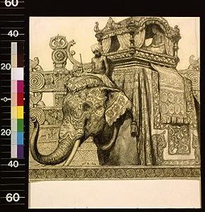 Photo: Elephant with howdah