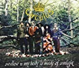 Swallow/My Body Is Made of Sunlight by Circulus