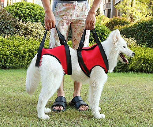 jhua-soft-fore-legs-and-hind-legs-adjustable-dog-lift-support-canine-rehabilitation-harness-for-elde