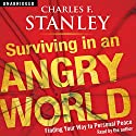 Surviving in an Angry World: Finding Your Way to Personal Peace (       UNABRIDGED) by Charles F Stanley Narrated by Charles F Stanley