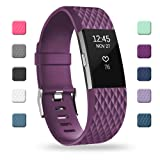 POY Replacement Bands Compatible for Fitbit Charge 2, Adjustable Sport Wristbands, Large Purple, 1PC