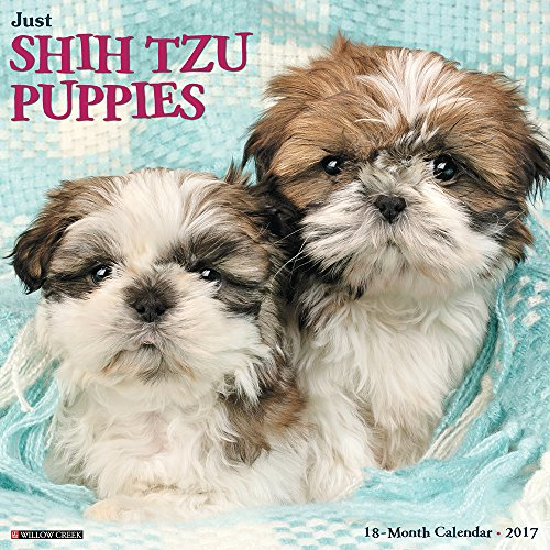 Just Shih Tzu Puppies 2017 Wall Calendar (Dog Breed Calendars)