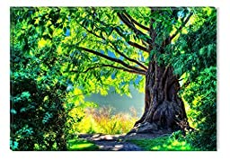 Startonight Wall Art Canvas Fairy Green Forest, Nature USA Design for Home Decor, Dual View Surprise Artwork Modern Framed Ready to Hang Wall Art 23.62 X 35.43 Inch 100% Original Art Painting!