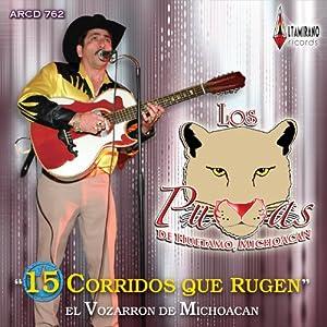 Los Pumas De Huetamo Michoacan - Los Pumas De Michoacan (15 Corridos