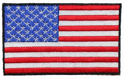 Print American Flag NASA Patch (page 5) - Pics about space