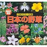 カラー名鑑 増補改訂新版 日本の野草 (山溪カラー名鑑)