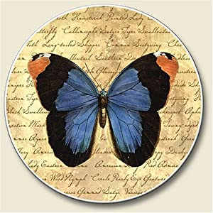 Butterfly//Wolf Silhouette Sandstone Car Coasters Set of 2
