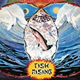 Fish Rising by Steve Hillage (2007-12-15)