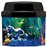 61282ImBgrL. SL160  Aquarius AQ15002 Semi hexagon 5 Gallon Aquarium with Hood and CFL lighting and Mini Might Internal Filter