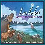 Los lechos: Durmiendo en los ríos del mundo [Riverbeds: Sleeping in the World's Rivers] | Gail Langer Karwoski