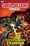 img - for Super-Villains Unite: The Complete Super-Villain Team-Up book / textbook / text book