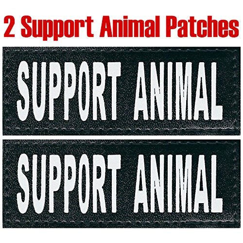 "Service Dog ""Support Animal"""