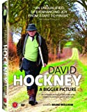 David Hockney: A Bigger Picture [DVD] [2009] [Region 1] [US Import] [NTSC]