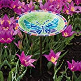 Vibrant Butterfly Bird Bath