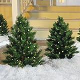 Cordless LED Pre-lit Walkway Tree