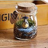 (Artlalic) Micro Landscape Model, Totoro Crafts DIY Dollhouse Mini Toy Glass Garden Decor Gift