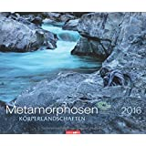 Metamorphosen 2016: Körperlandschaften