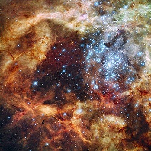 TARANTULA-NEBULA-POSTER-Space-Astrology-Amazing-Nasa-Hubble-Telescope-Shot-RARE-HOT-NEW-24x24