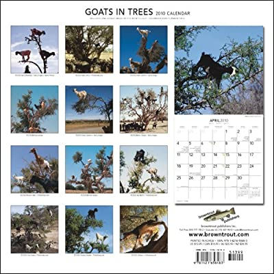 Goats In Trees Calendar 2012 Now see this years calendar