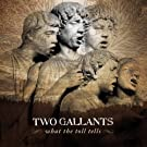What the Toll Tells [Vinyl]