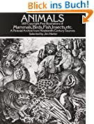 Animals: 1,419 Copyright-Free Illustrations of Mammals, Birds, Fish, Insects, Etc (Dover Pictorial Archives)