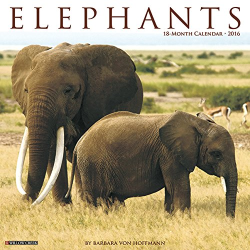 2016 Elephants Wall Calendar