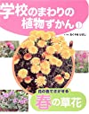 学校のまわりの植物ずかん〈1〉花の色でさがせる春の草花